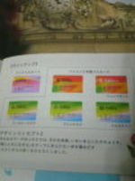 Photo_2_3
